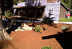 Pines Landscaping