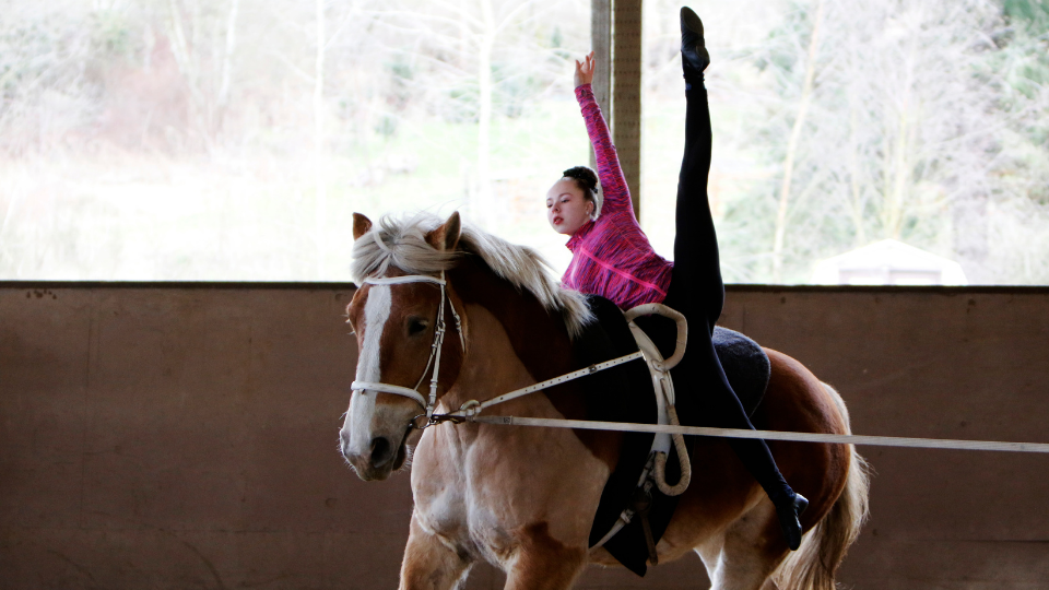 Vaulting lessons at Warm Beach Horsemanship are located in Stanwood, WA just north of Seattle