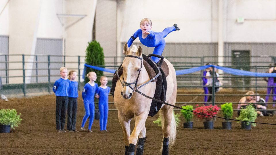 Horsemanship, vaulting, at Warm Beach Camp and Conference Center, Stanwood, WA; near Seattle.