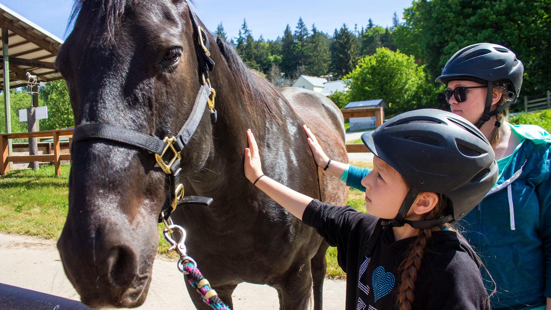 Horse-assisted learning at Warm Beach Camp and Conference Center, Stanwood, WA; near Seattle.